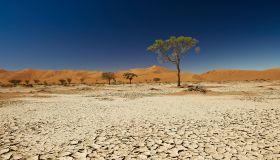desert Landscape of Namib at Sossusvlei, Namibia