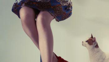 woman's feet in slippers & her cat beneath a desk